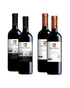 4 Vinos Loma Negra Colección NSVL2131