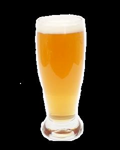 Vasos Cerveceros  Nadir Múnich 06 Pzas 330 ML